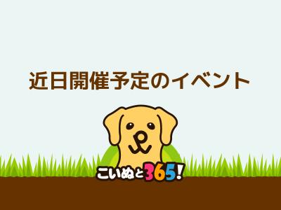 【日本盲導犬協会】『盲導犬ふれあい広場』コープやまぐち「生協まつり」(パピネス) @ 阿知須きらら博記念公園きららドーム | 山口市 | 山口県 | 日本